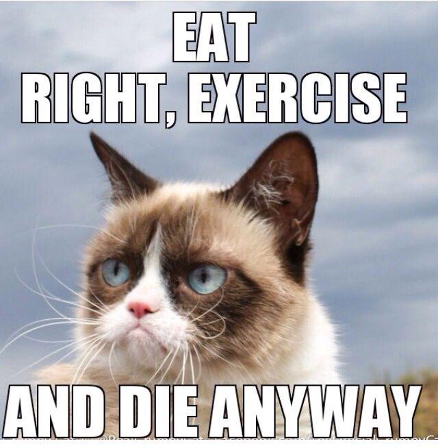 Grumpy Cat Eat and Die